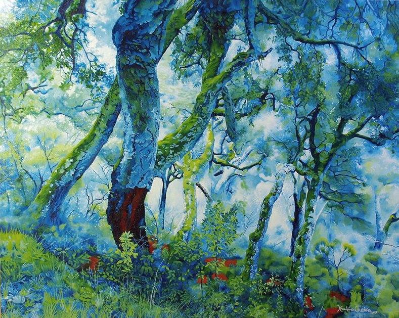 Cork oaks in Froxán